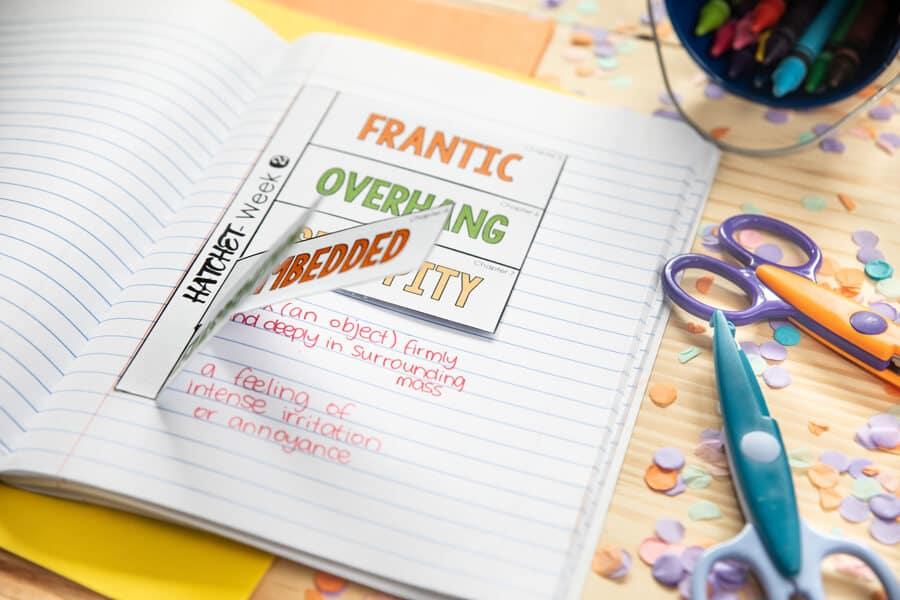 Hatchet Novel Study vocabulary