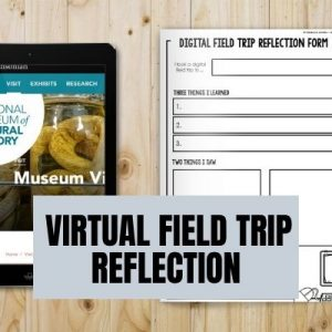 Free Virtual Field Trip Reflection
